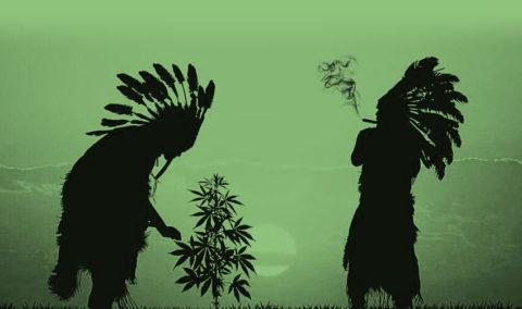Cannabis Native Sovereignty