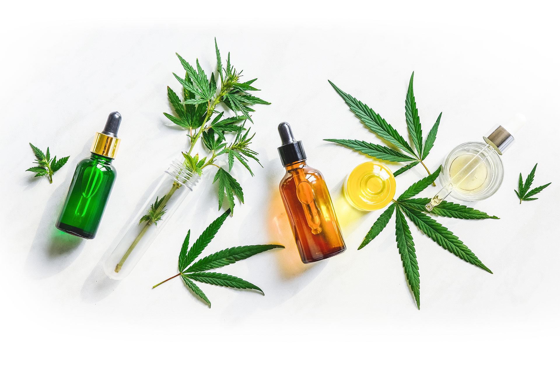 Native American Cannabis Business Model