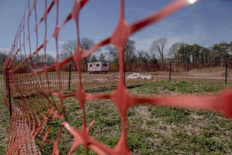 The Hamptons Take Wait-and-See Approach on Marijuana