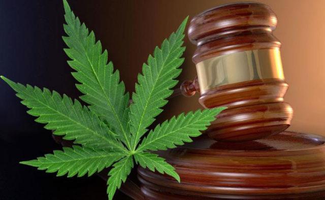 Cannabis Project Development